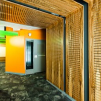 Decorative Timber Acoustiic Panels