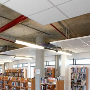 design-enviro-government-library-ceiling-copy_600-png
